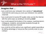 what is the dvguide