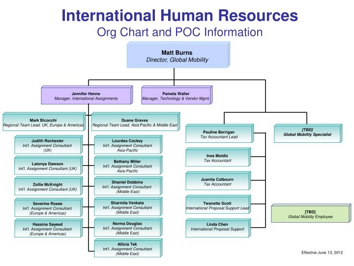 Ppt  International Human Resources Org Chart And Poc Information