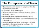 the entrepreneurial team