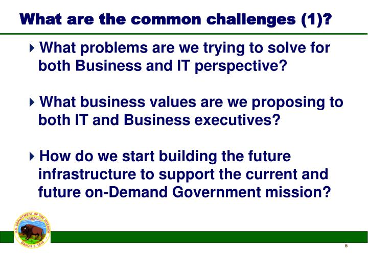 What are the common challenges (1)?