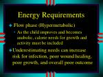 energy requirements1