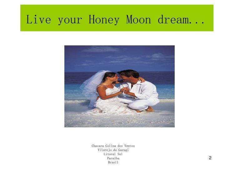 Live your honey moon dream