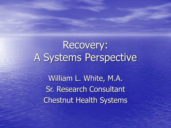 recovery a systems perspective n.