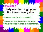judy and her dog run on the beach every day5