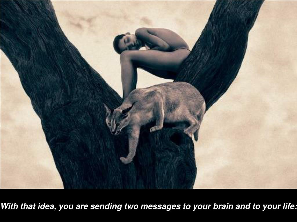 With that idea, you are sending two messages to your brain and to your life: