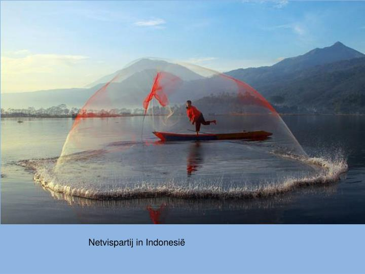 Netvispartij in Indonesië