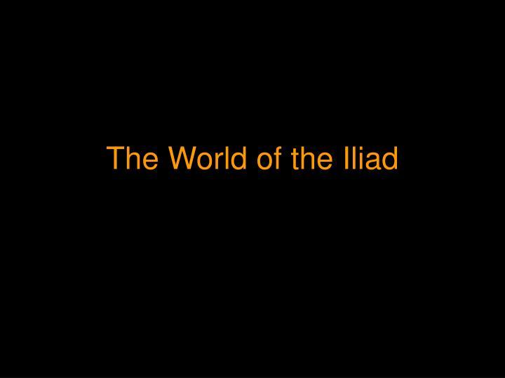 the world of the iliad n.