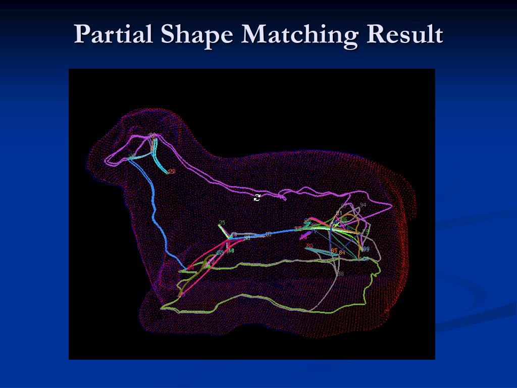 Partial Shape Matching Result