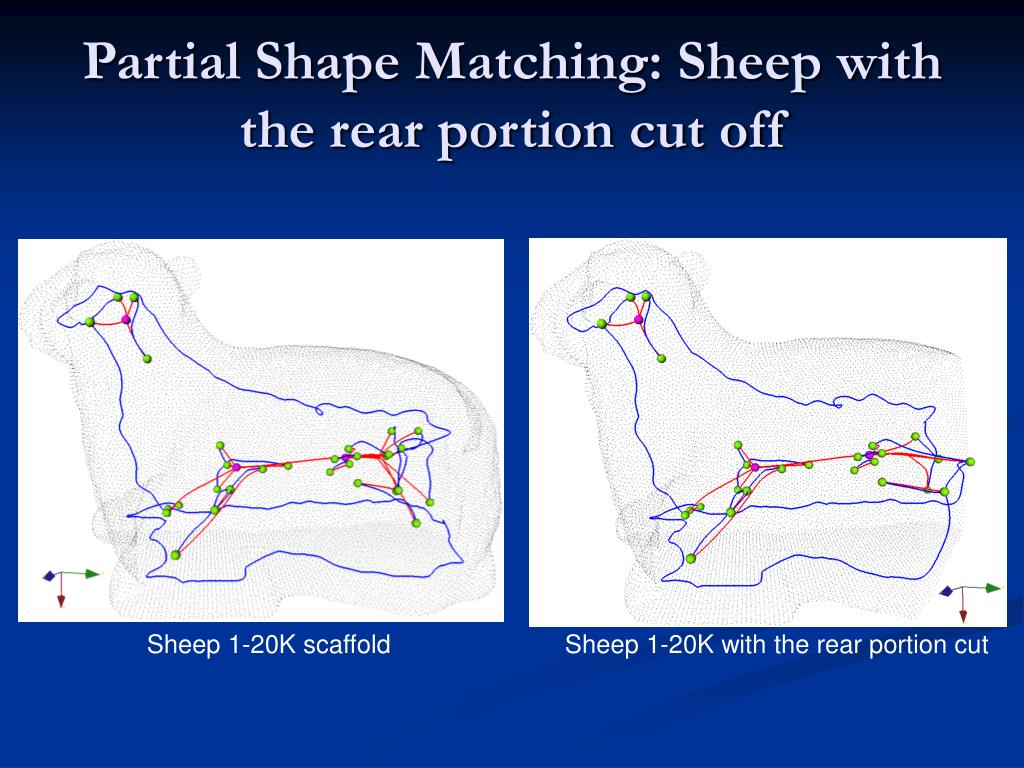 Partial Shape Matching: Sheep with the rear portion cut off