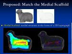 proposed match the medial scaffold
