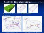scaffold regularization