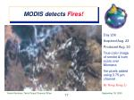 modis detects fires