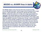 modis vs avhrr fires in idaho28