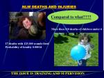 nlw deaths and injuries