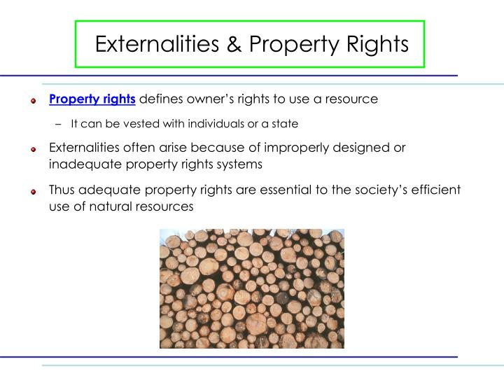 Externalities & Property Rights