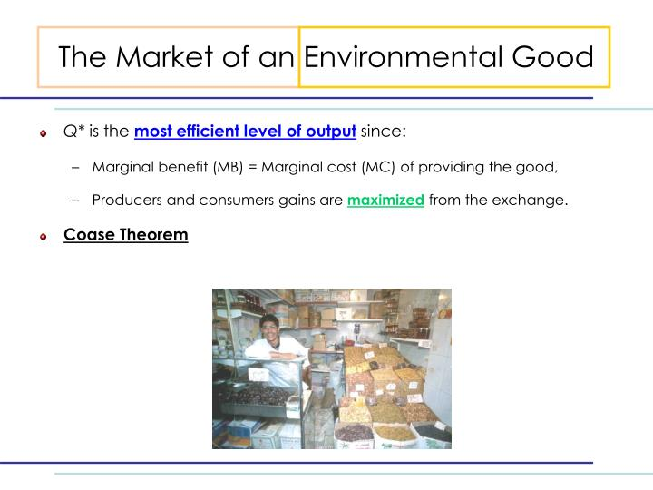 The Market of an Environmental Good