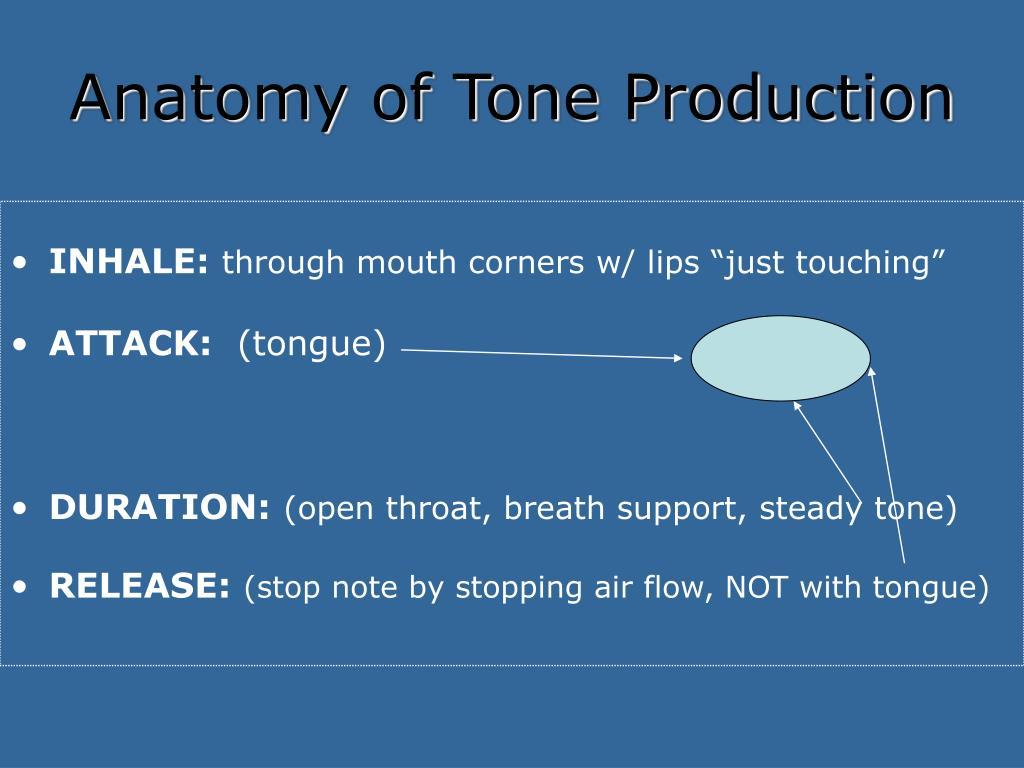 Anatomy of Tone Production