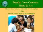 popular vote contests photo art15