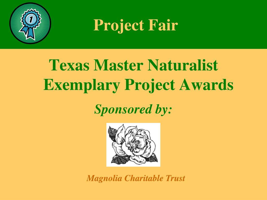 Project Fair