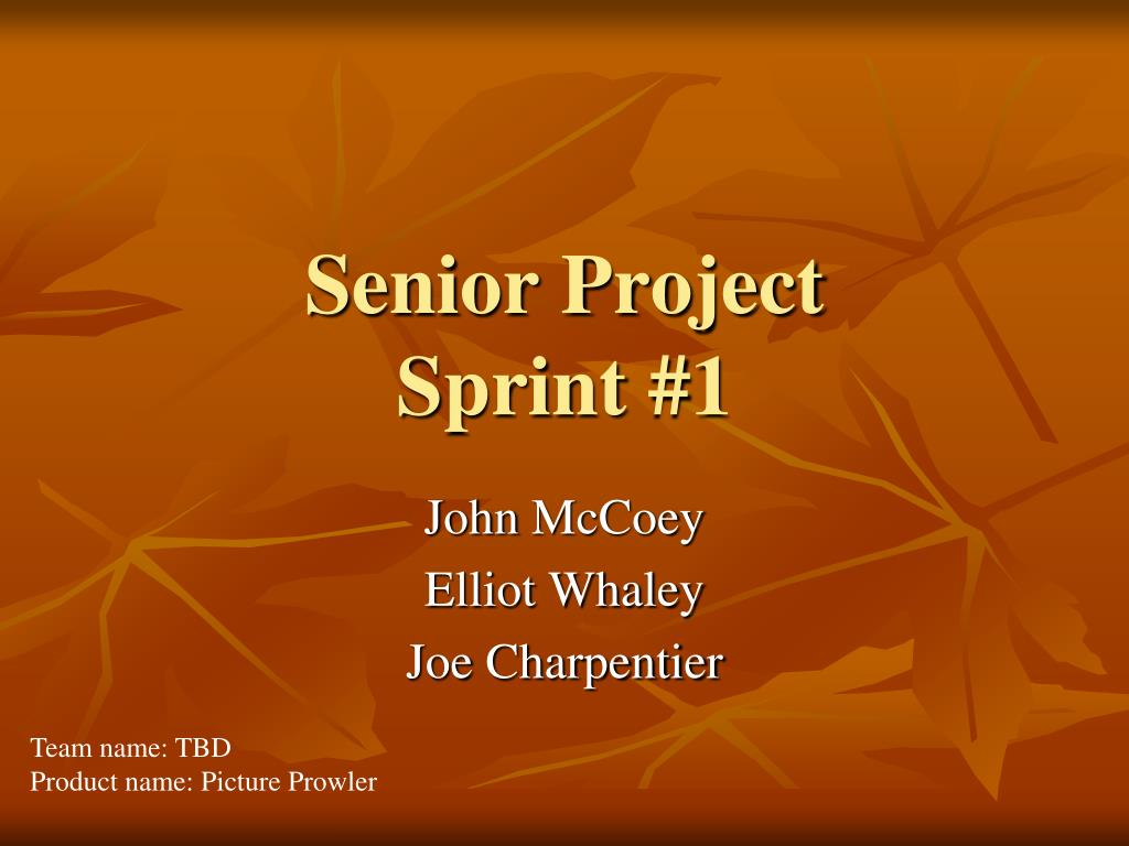 senior project sprint 1 l.