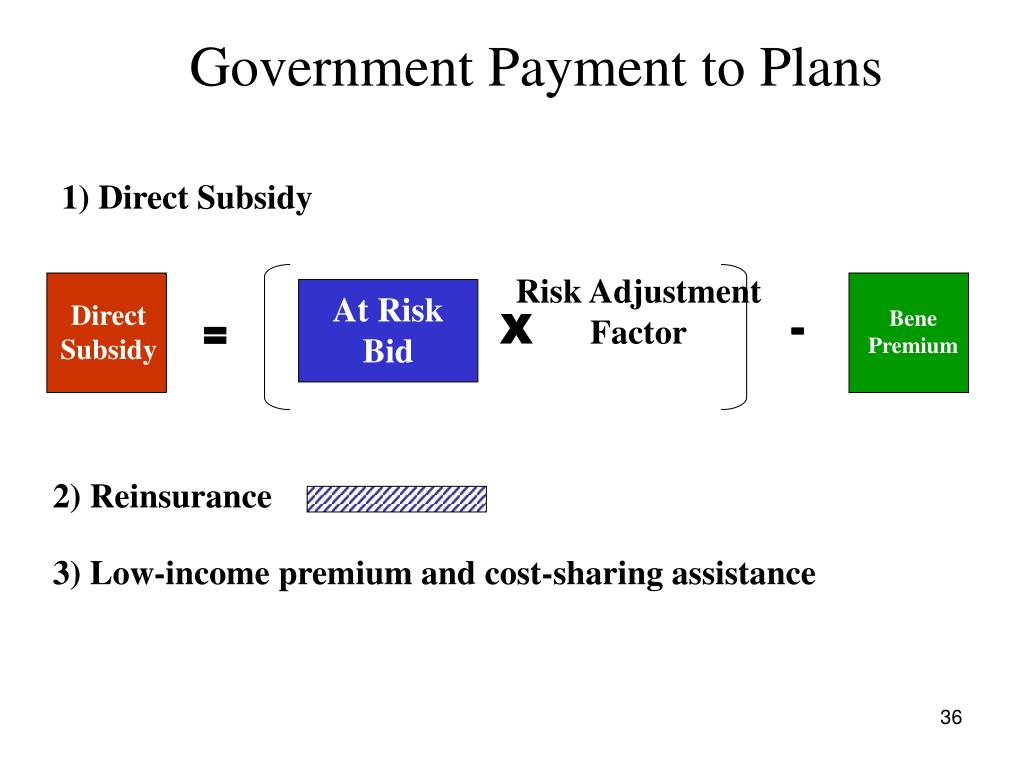 Government Payment to Plans
