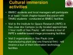 cultural immersion activities