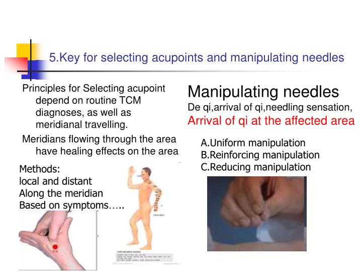5.Key for selecting acupoints and manipulating needles