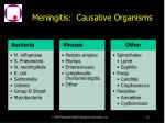 meningitis causative organisms