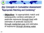 key concepts in cumulative assessment appropriate matching and combining