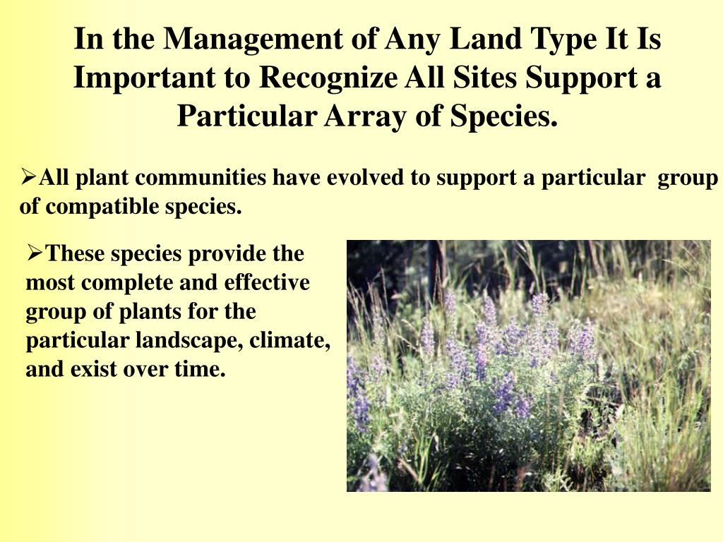 In the Management of Any Land Type It Is Important to Recognize All Sites Support a Particular Array of Species.