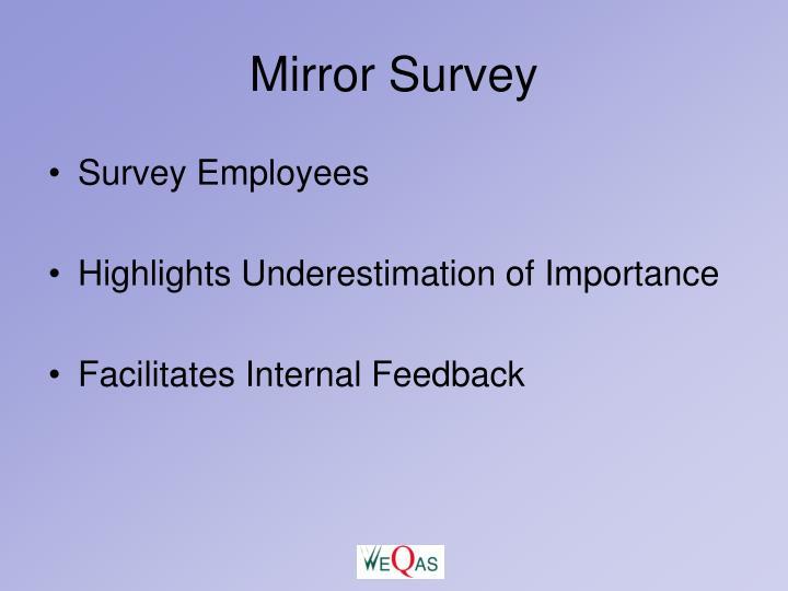 Mirror Survey