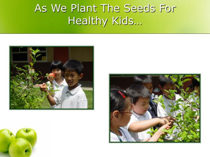 As We Plant The Seeds For