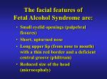 the facial features of fetal alcohol syndrome are