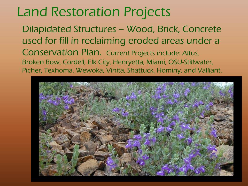 Land Restoration Projects