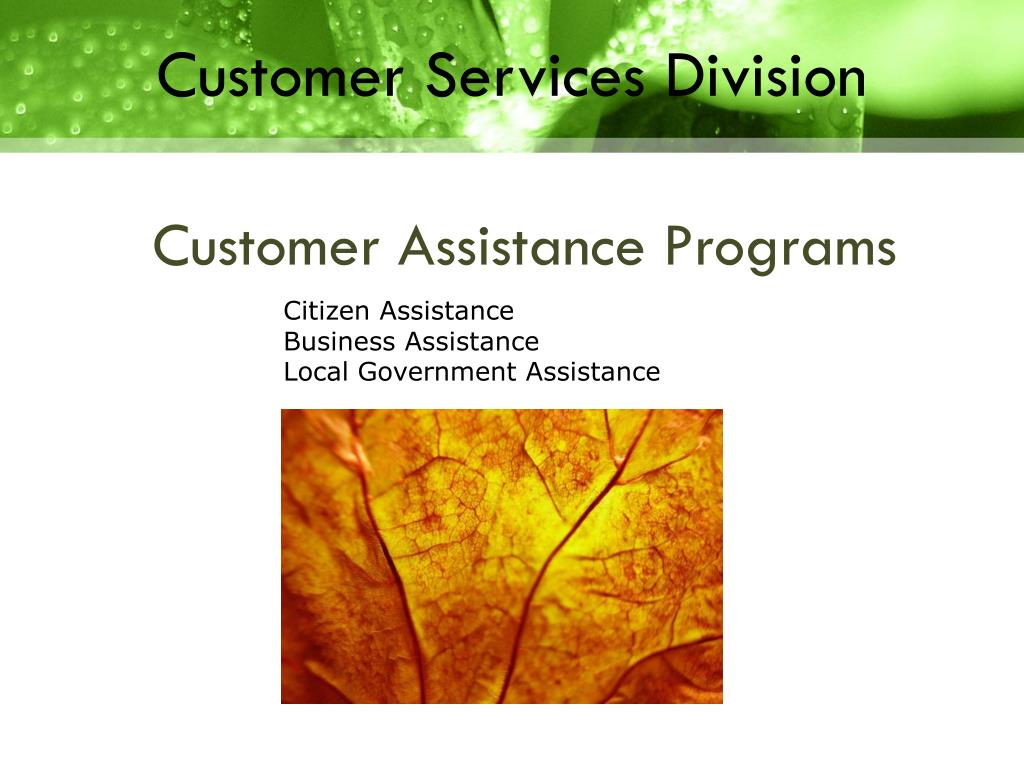 Customer Services Division