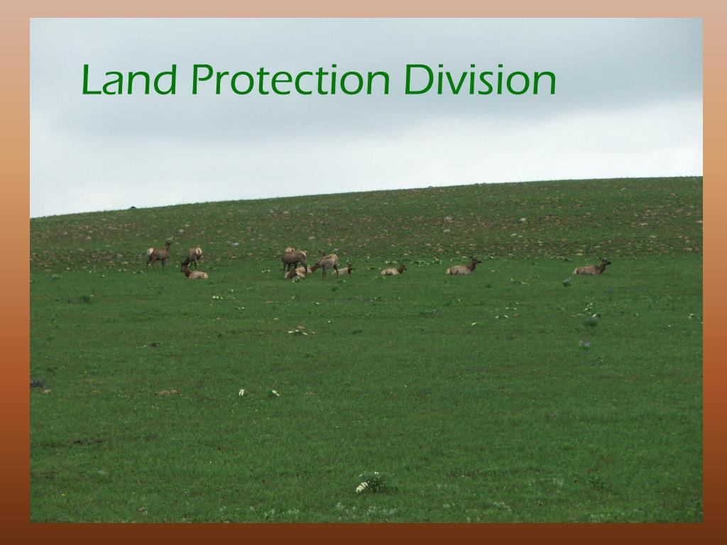 Land Protection Division