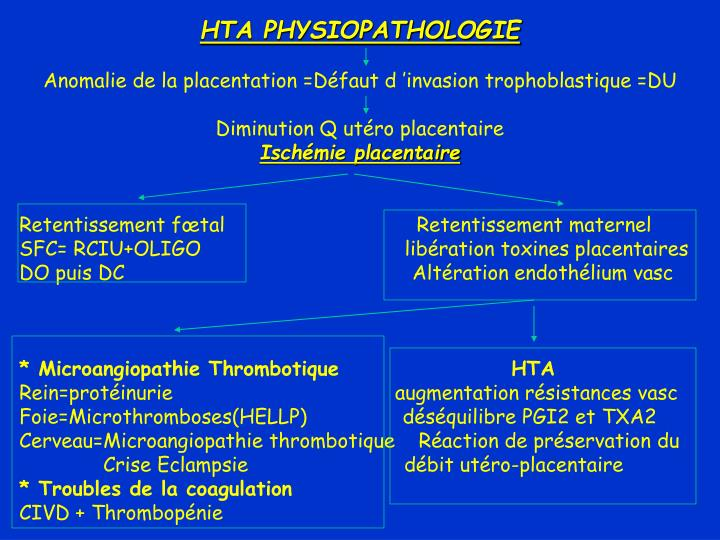 HTA PHYSIOPATHOLOGIE