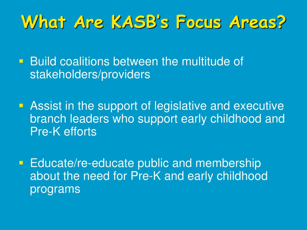 What Are KASB's Focus Areas?