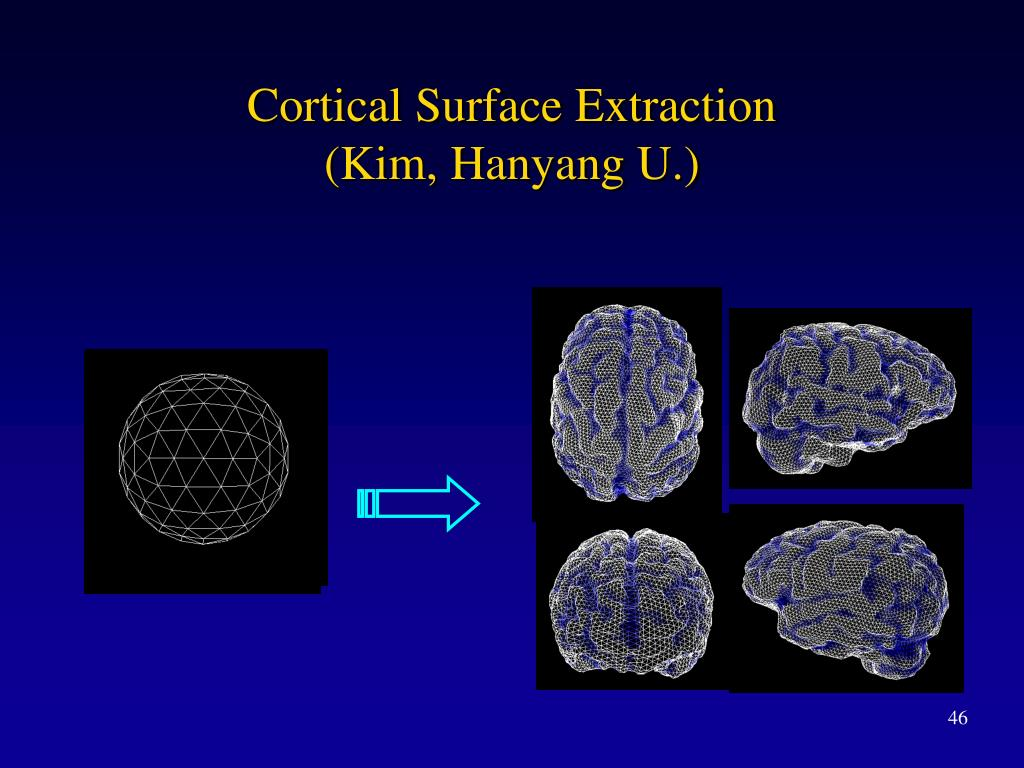 Cortical Surface Extraction