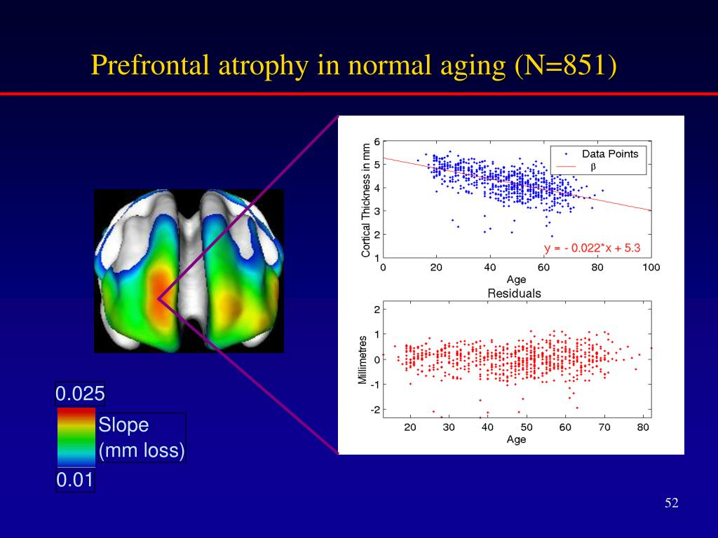 Prefrontal atrophy in normal aging (N=851)