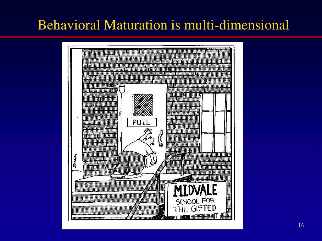 Behavioral Maturation is multi-dimensional