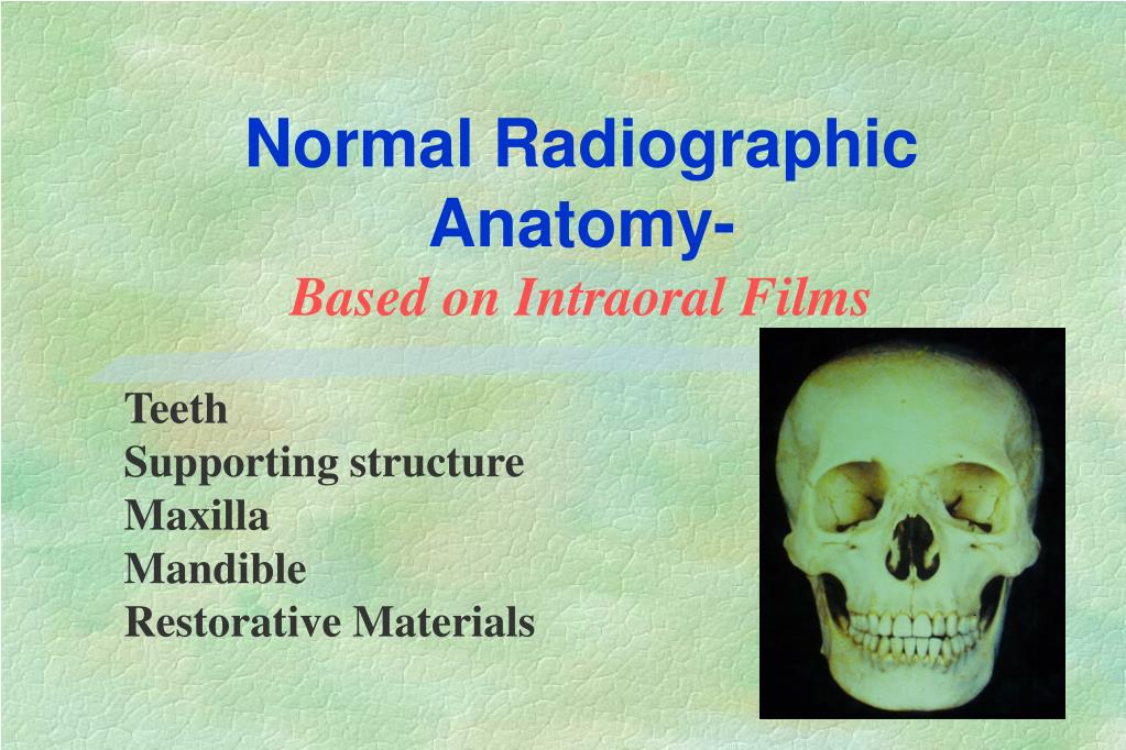 Ppt Normal Radiographic Anatomy Based On Intraoral Films