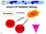generic op metabolic pathway