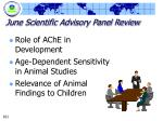 june scientific advisory panel review