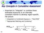 key concepts in cumulative assessment