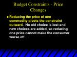 budget constraints price changes35