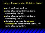 budget constraints relative prices57