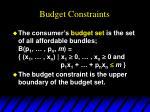 budget constraints7