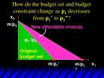 how do the budget set and budget constraint change as p 1 decreases from p 1 to p 133
