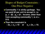 shapes of budget constraints one price negative